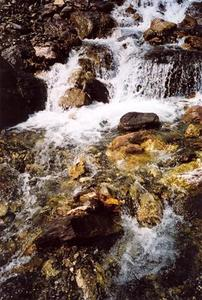 Close up, stream and rocks
