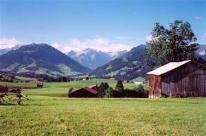 Farms and fields over Gstaad