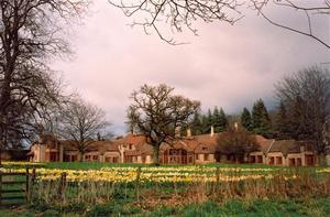 View of Centre in spring with daffodils, grey sky