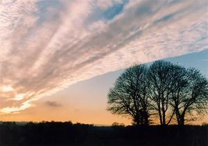 Sunset with diagonal cloud and trees