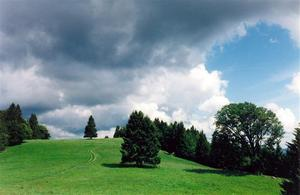 path on green wooded hill, clouds
