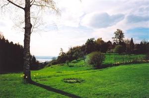 View of Lake Constanz from green field