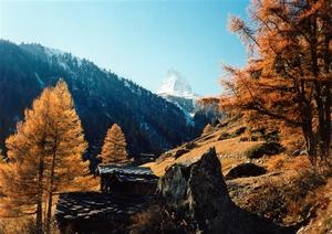 Matterhorn, larch trees and huts