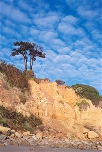Cliff with trees and shrubs, nice clouds