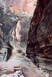 Canyon walls, Zion