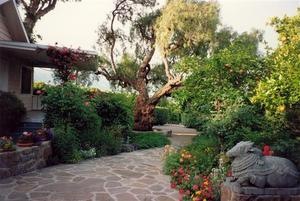 Pine Cottage patio with statue and Pepper Tree