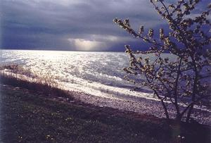 Sunrays thru rain clouds over french alps, tree and beach at the front
