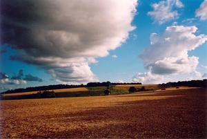 Clouds over yellow fields