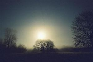 Pale and hazy winter sun