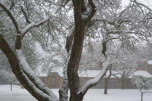 Brockwood Study Centre in winter