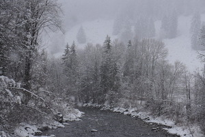 The Saane River in snow