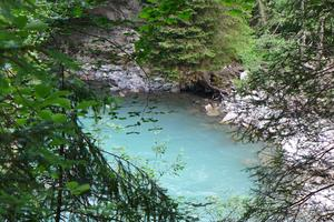 Corner of paradise on the Saanen River