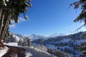 Walking towards Saanen in winter